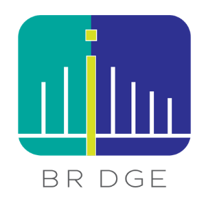 BRDGE P2P Lending